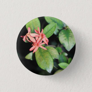 Tropical Exotic Coral Flower, Kew Gardens Badge Pinback Button