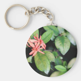Tropical Exotic Coral Flower, Kew Gardens Key Ring