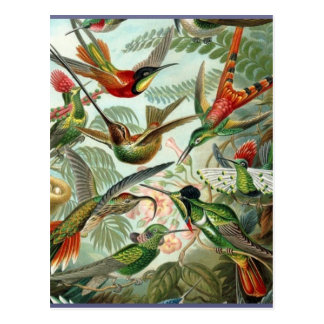 Tropical exótico del vintage del arte vibrante de postal