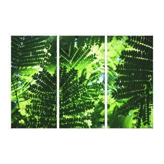 Tropical Ferns Stretched Canvas Prints