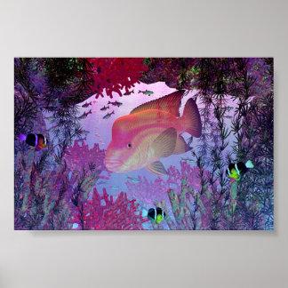 Tropical Fish3 Poster