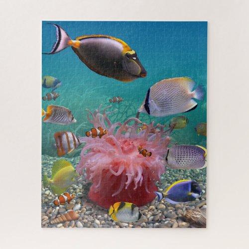 Tropical Fish 500 Puzzle