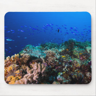Tropical Fish and Coral Reef Mousepad