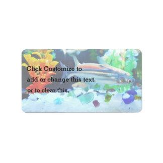 Tropical Fish Aquarium Label