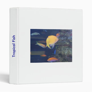 Tropical Fish Avery Binder