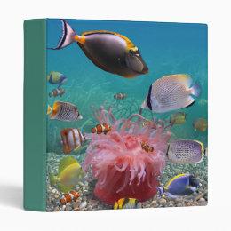 Tropical Fish Binder