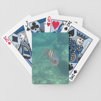 Tropical Fish Cards Bicycle Playing Cards