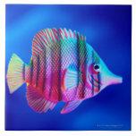 """Tropical Fish Ceramic Tile<br><div class=""""desc"""">Tropical Fish    Lawrence Lawry   AssetID: WL004139</div>"""