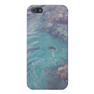 Tropical Fish & Coral Underwater Iphone Case Cases Cases For iPhone 5