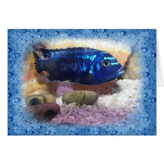 Tropical Fish Digital Watercolor Card