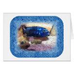 Tropical Fish Digital Watercolor Greeting Cards