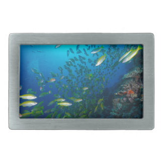 Tropical Fish Great Barrier Reef Coral Sea Belt Buckle