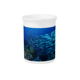 Tropical Fish Great Barrier Reef Coral Sea Drink Pitchers