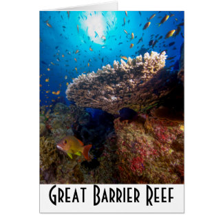 Tropical Fish Great Barrier Reef Coral Sea Gift Card