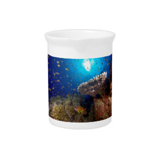 Tropical Fish Great Barrier Reef Coral Sea Gift Pitchers