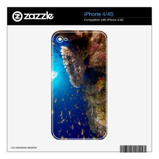 Tropical Fish Great Barrier Reef Coral Sea Gift Skin For The iPhone 4