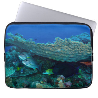 Tropical Fish Great Barrier Reef Coral Sea Laptop Sleeve