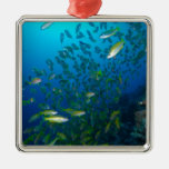Tropical Fish Great Barrier Reef Coral Sea Metal Ornament