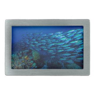 Tropical Fish Great Barrier Reef Coral Sea Rectangular Belt Buckle