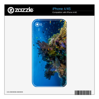 Tropical Fish Great Barrier Reef Coral Sea iPhone 4S Skin
