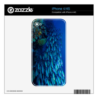 Tropical Fish Great Barrier Reef Coral Sea Skins For The iPhone 4S