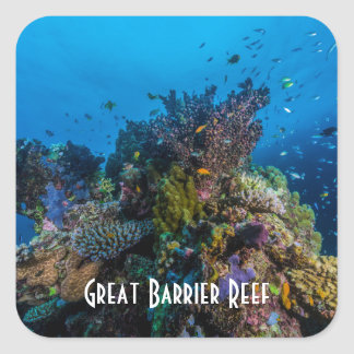 Tropical Fish Great Barrier Reef Coral Sea Square Sticker