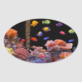 Tropical Fish image for Oval-Stickers-Glossy Oval Sticker