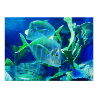 Tropical Fish in Beautiful Blues and Greens Print