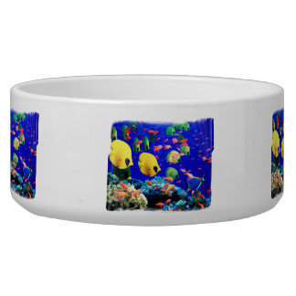 Tropical Fish in Coral Sea Bowl