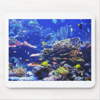 Tropical Fish Mouse Pad