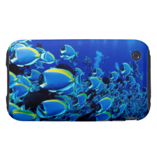 Tropical Fish number 1 IPhone Case Tough iPhone 3 Covers