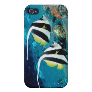 Tropical Fish number 2 IPhone 4 speck case