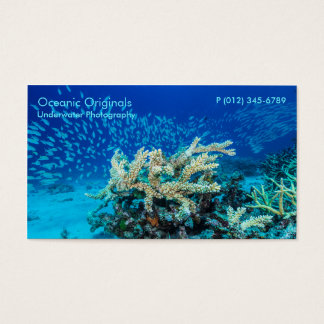 Tropical Fish of the Coral Sea Business Card