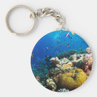 Tropical Fish of the Coral Sea Basic Round Button Keychain