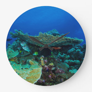 Tropical Fish of the Coral Sea Large Clock