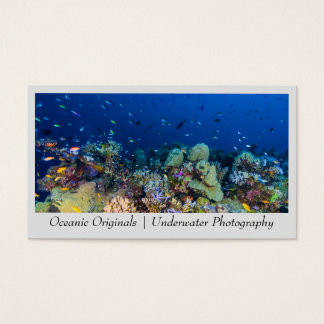 Tropical Fish on a Coral Reef Business Card