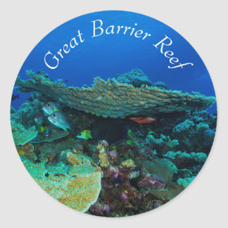 Tropical Fish on the Great Barrier Reef Classic Round Sticker