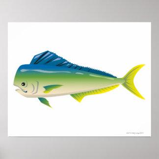 Tropical Fish Poster