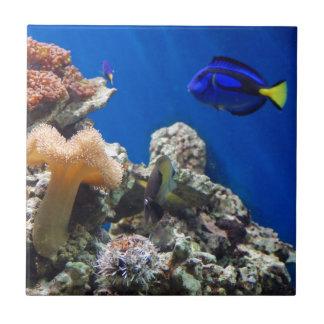 TROPICAL FISH SEALIFE CORAL DIGITAL REALISM OCEAN CERAMIC TILE