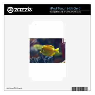 tropical fish decal for iPod touch 4G