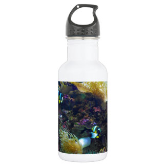 Tropical Fish Stainless Steel Water Bottle