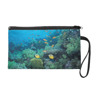 Tropical fish swimming over reef wristlet purses