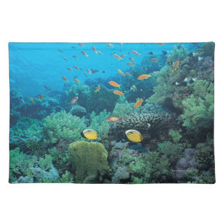 Tropical fish swimming over reef cloth place mat