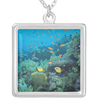 Tropical fish swimming over reef square pendant necklace