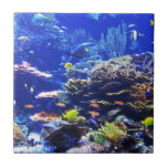 "Tropical Fish Tile<br><div class=""desc"">A multitude of brightly colored fish dart in and out of the reefs.</div>"