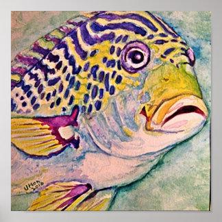 tropical fish watercolor poster