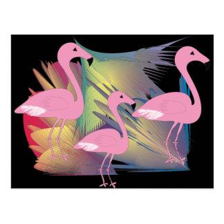 Tropical Flamingo Gifts Postcard