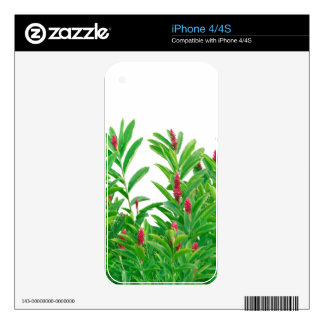 Tropical Floral Print iPhone 4 Skin
