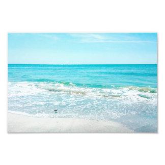 Tropical Florida Beach Sand Ocean Waves Sandpiper Photo Print