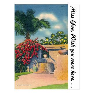 Tropical Florida Postcard